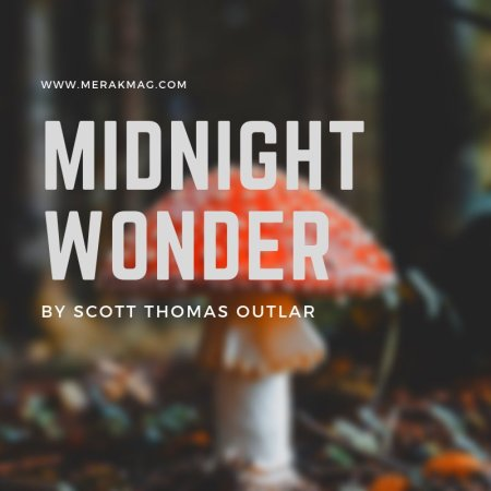 Midnight Wonder - Merak Magazine